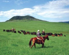 Time to Explore Colorado's Dude & Guest Ranches