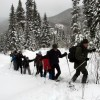 Explore Rocky Mountain National Park this Winter by Snowshoes or Skis
