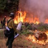 Yosemite National Park Remains Open; Rim Fire 80 Percent Contained