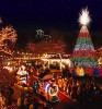 Branson Christmas Celebration Now Underway for Holidays